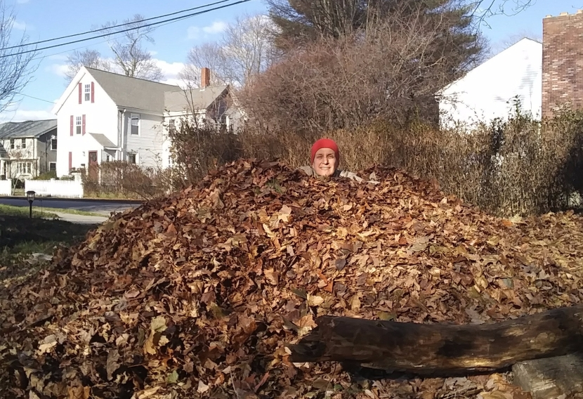 The Gigantic leaf pile