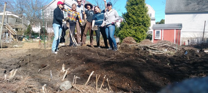 Raising the foodforest